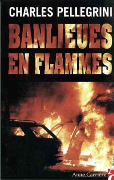 Banlieues en flammes